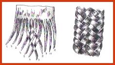 Trenza de doce tientos al ser redonda y hueca requiere relleno. Se peinan las hebras y se realizan dos lotes de seis cada uno.